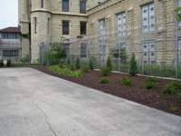 Park Yard with plantings